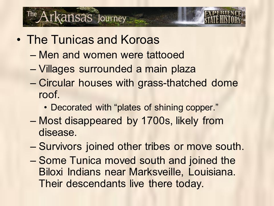 The Tunicas and Koroas Men and women were tattooed