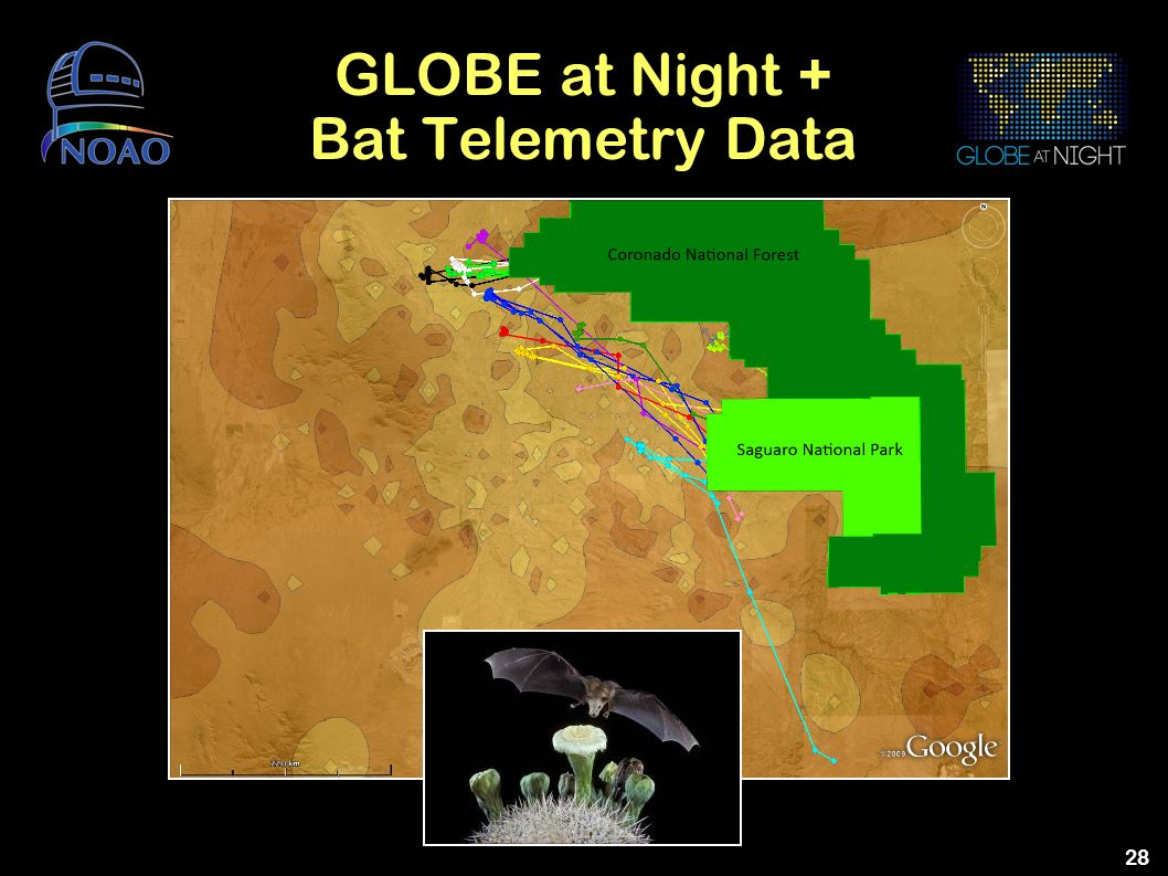 GLOBE at Night + Bat Telemetry Data