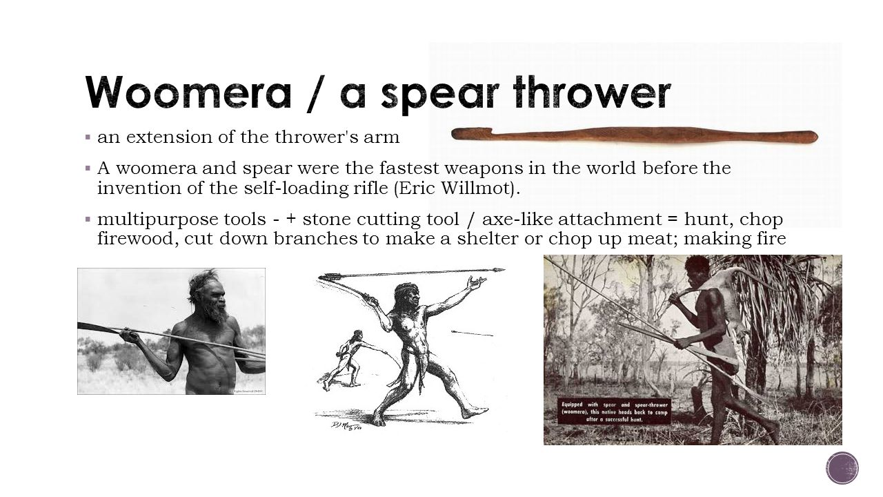 Woomera / a spear thrower