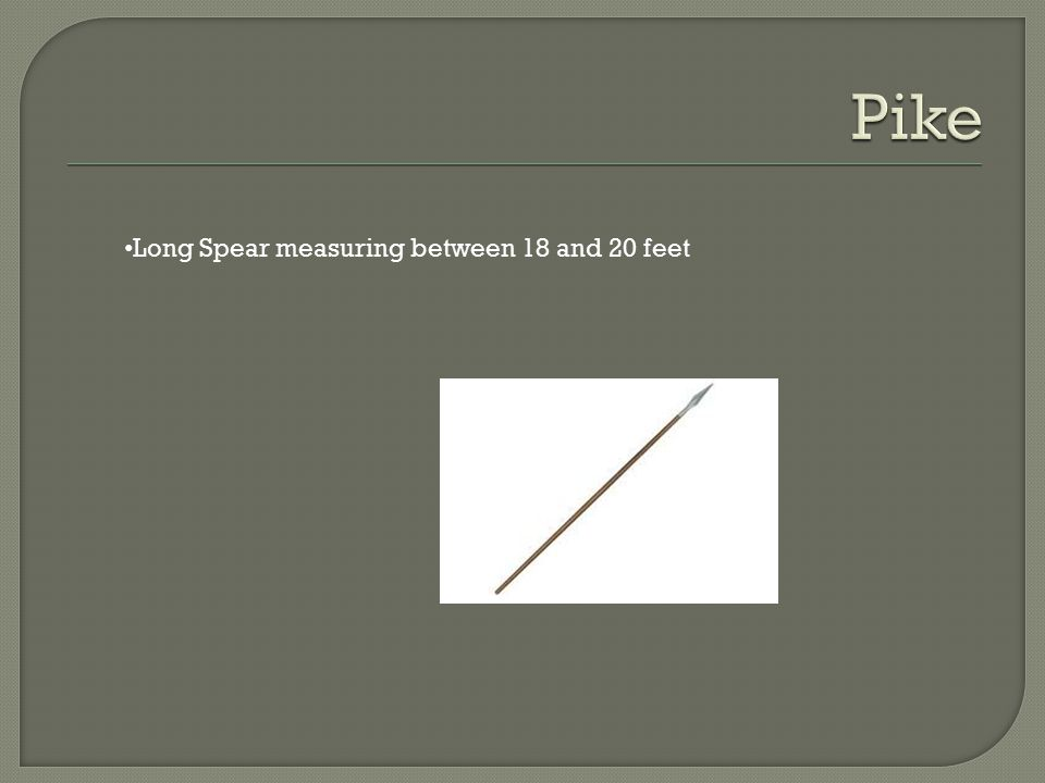 Pike Long Spear measuring between 18 and 20 feet