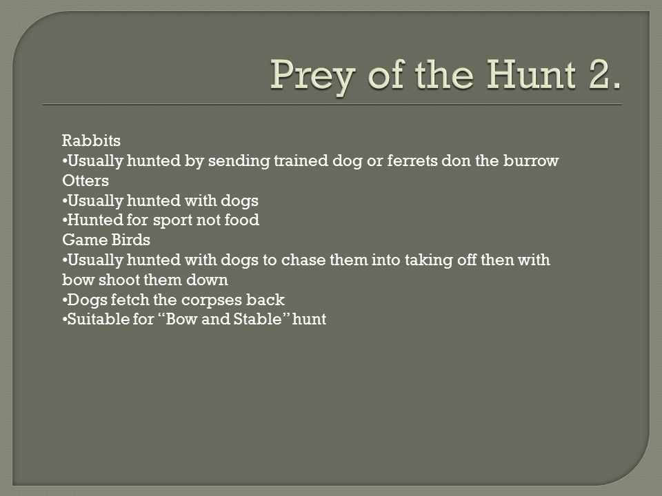 Prey of the Hunt 2. Rabbits
