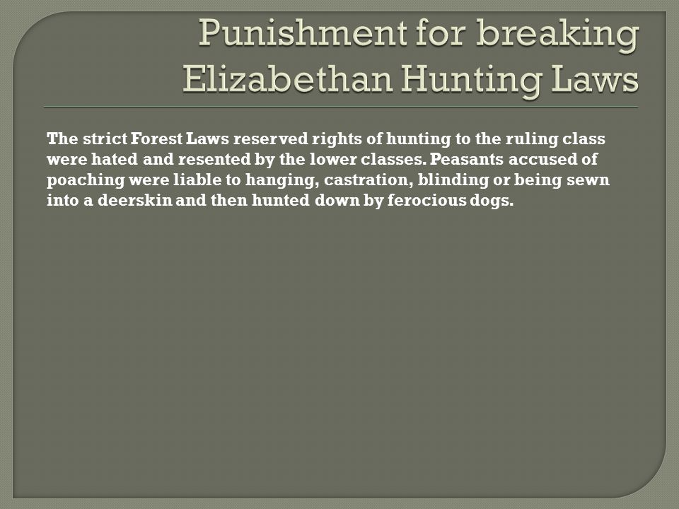 Punishment for breaking Elizabethan Hunting Laws