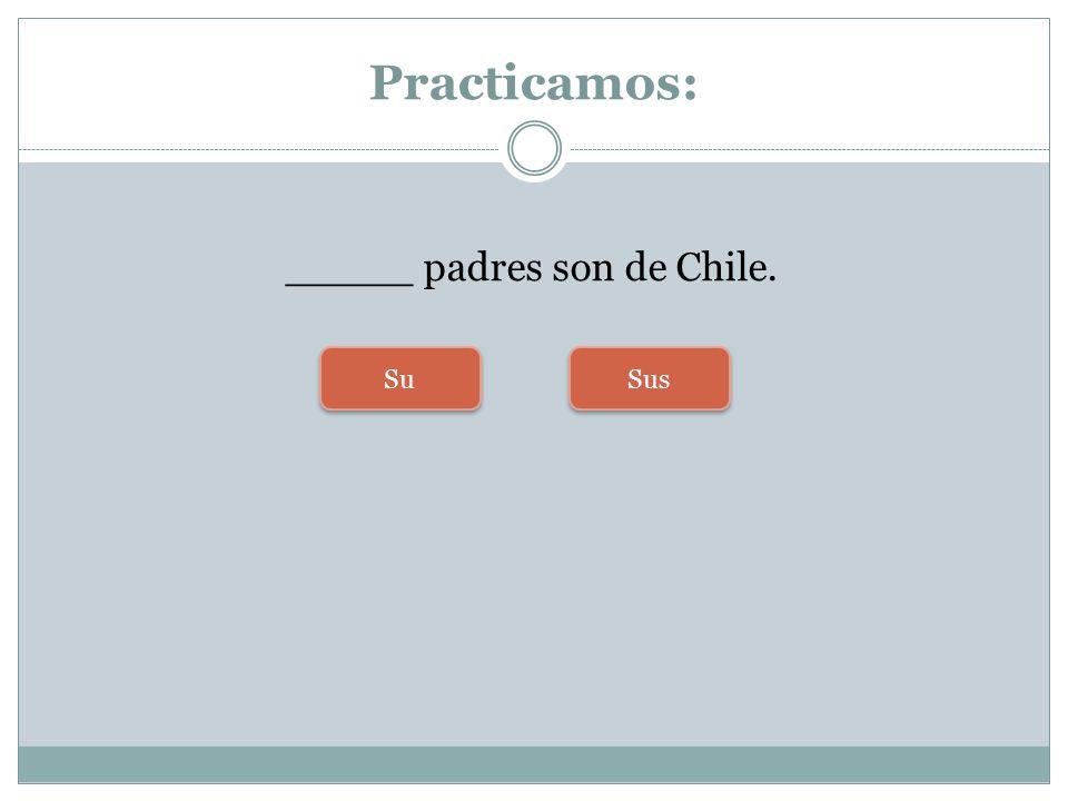 _____ padres son de Chile.