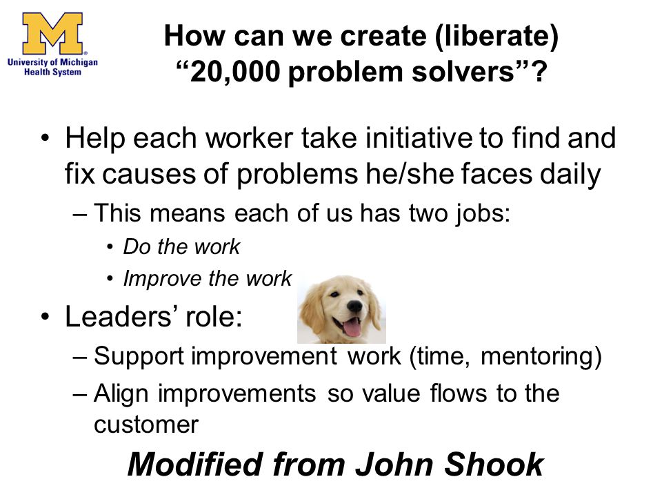 How can we create (liberate) 20,000 problem solvers
