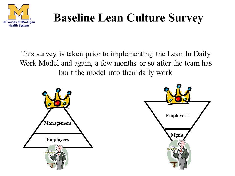 Baseline Lean Culture Survey