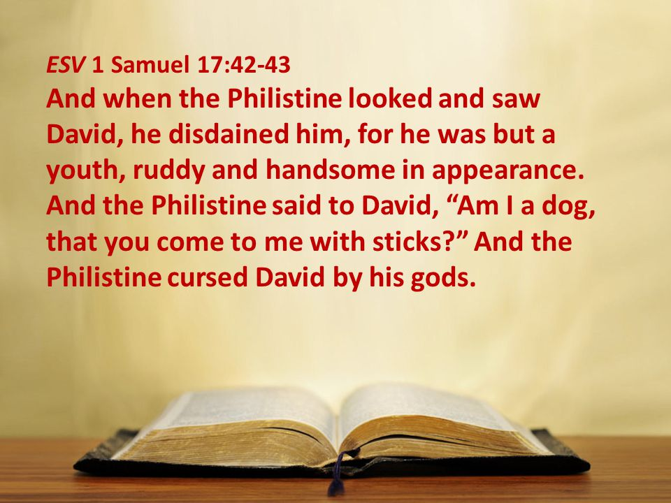 ESV 1 Samuel 17:42-43 And when the Philistine looked and saw David, he disdained him, for he was but a youth, ruddy and handsome in appearance.