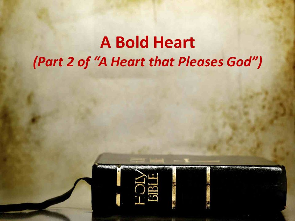 (Part 2 of A Heart that Pleases God )
