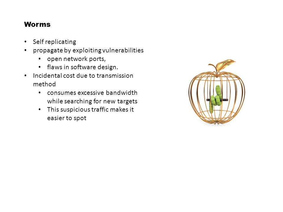 Worms Self replicating. propagate by exploiting vulnerabilities. open network ports, flaws in software design.