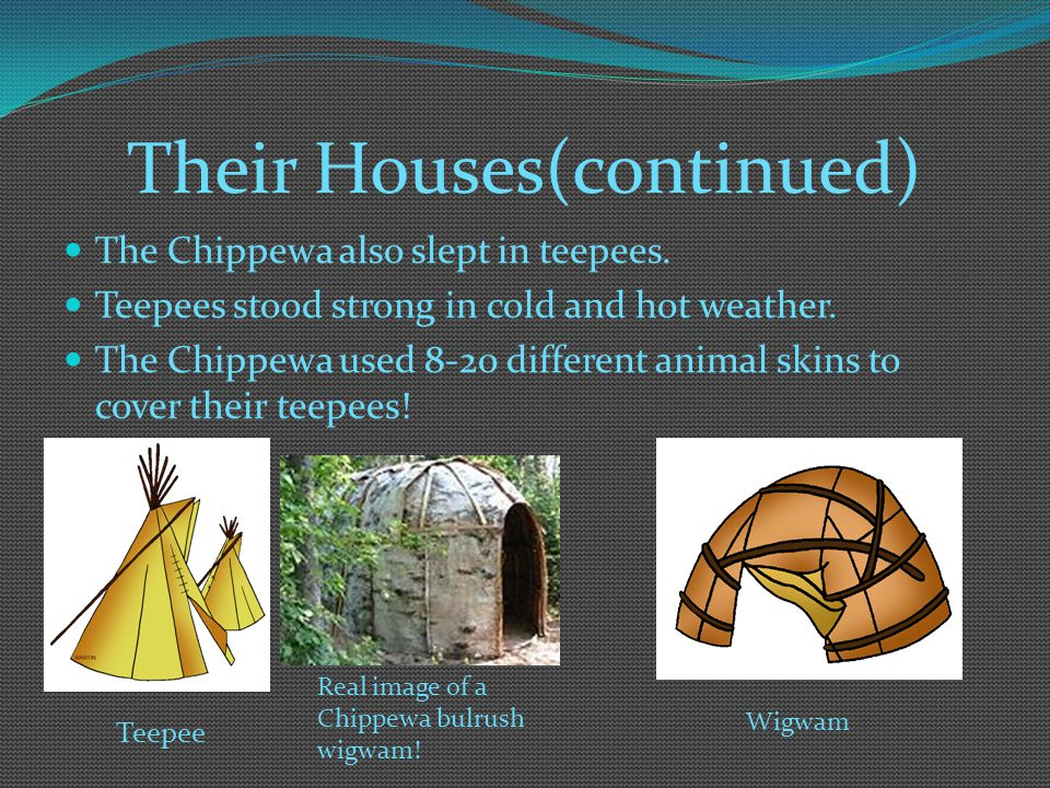 Their Houses(continued)