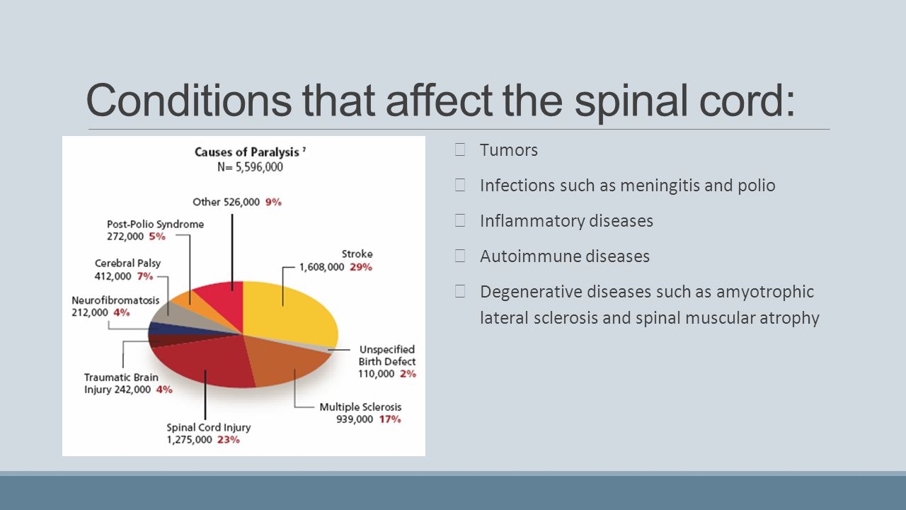 Conditions that affect the spinal cord: