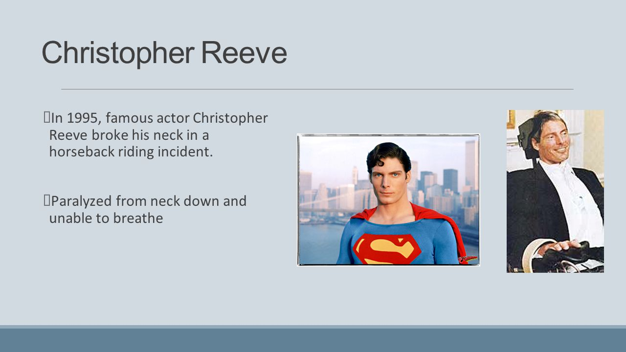 Image result for actor christopher reeve paralyzed