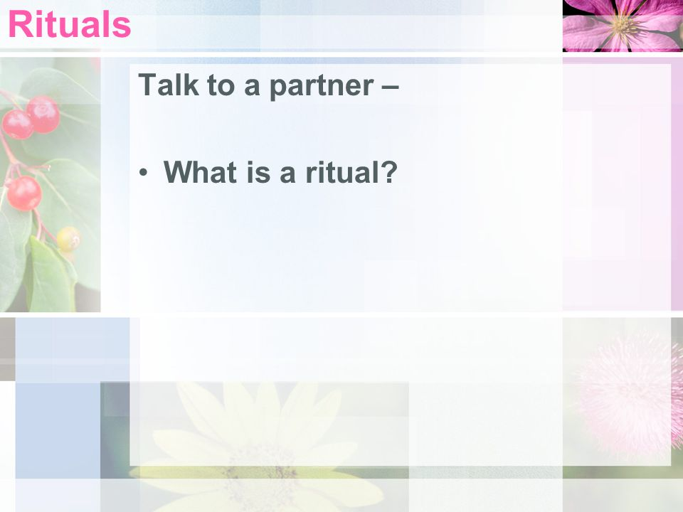 Rituals Talk to a partner – What is a ritual