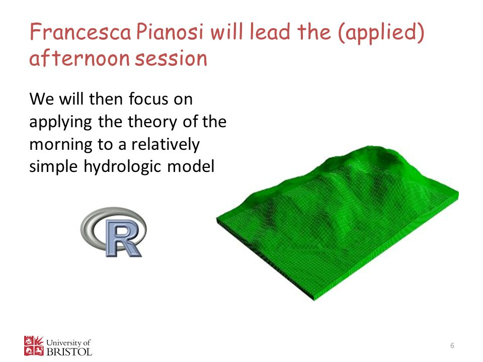 Francesca Pianosi will lead the (applied) afternoon session