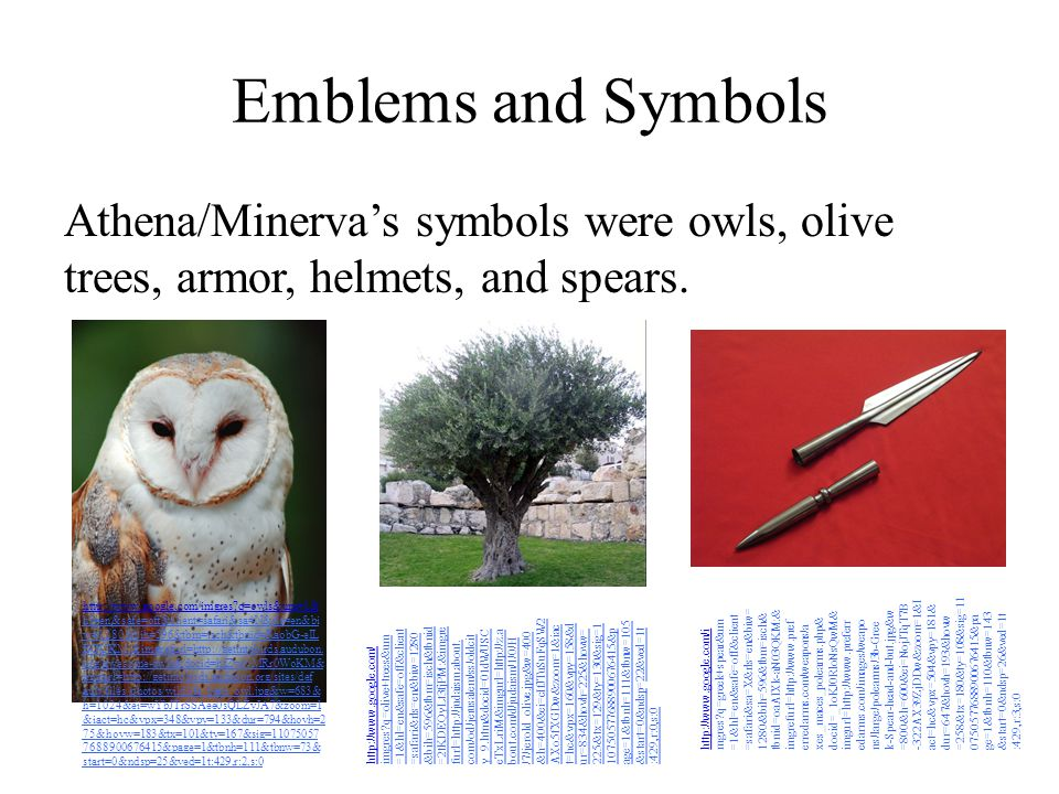 Emblems and Symbols Athena/Minerva's symbols were owls, olive trees, armor, helmets, and spears. -322AX39ZjDDw&zoom=1&I.