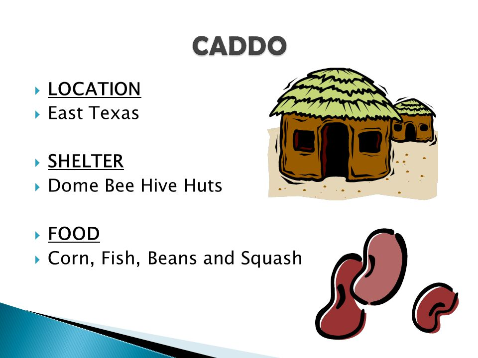 CADDO LOCATION East Texas SHELTER Dome Bee Hive Huts FOOD