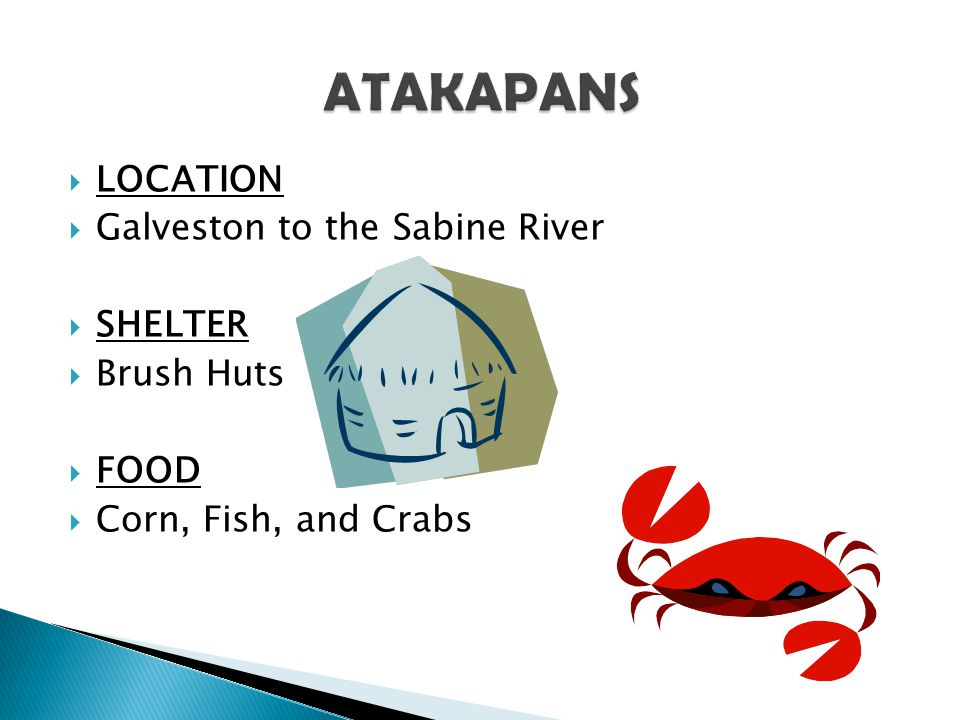 ATAKAPANS LOCATION Galveston to the Sabine River SHELTER Brush Huts