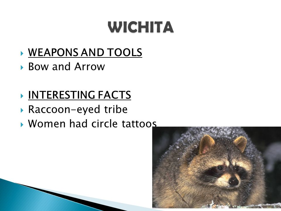 WICHITA WEAPONS AND TOOLS Bow and Arrow INTERESTING FACTS
