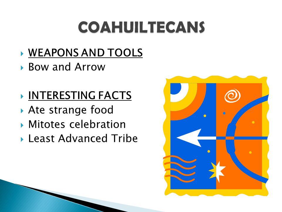 COAHUILTECANS WEAPONS AND TOOLS Bow and Arrow INTERESTING FACTS
