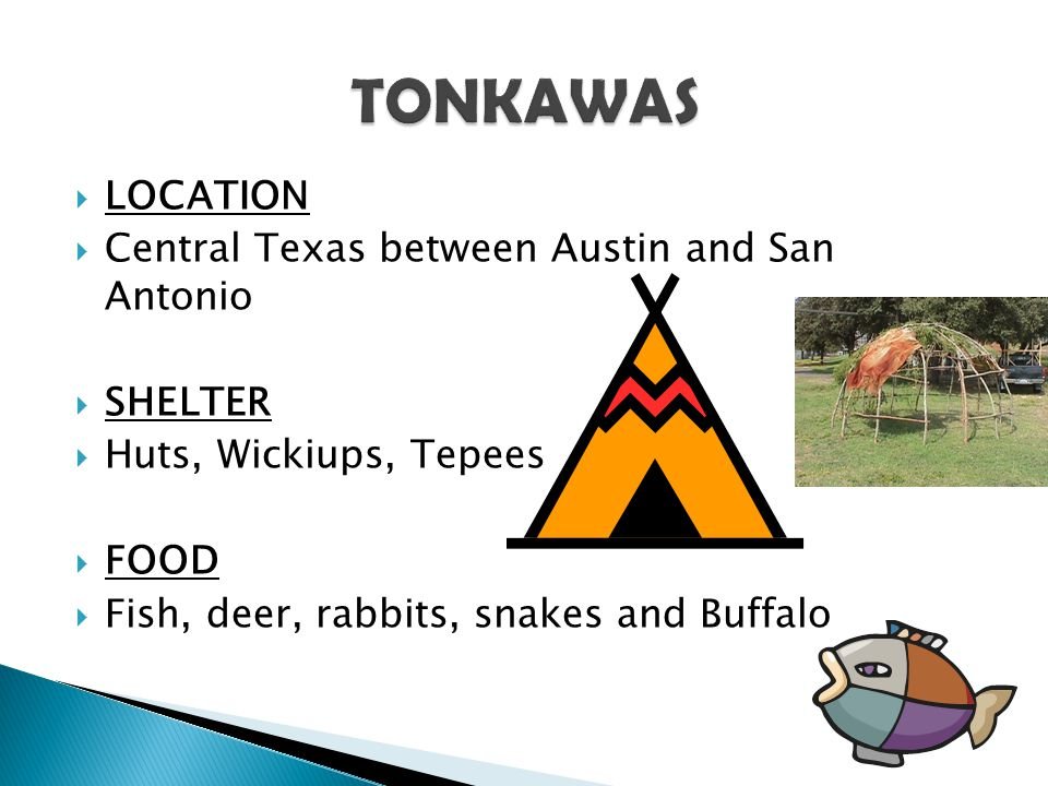TONKAWAS LOCATION Central Texas between Austin and San Antonio SHELTER