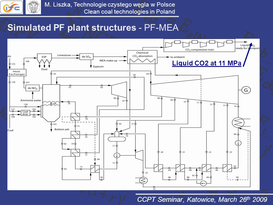 Simulated PF plant structures - PF-MEA