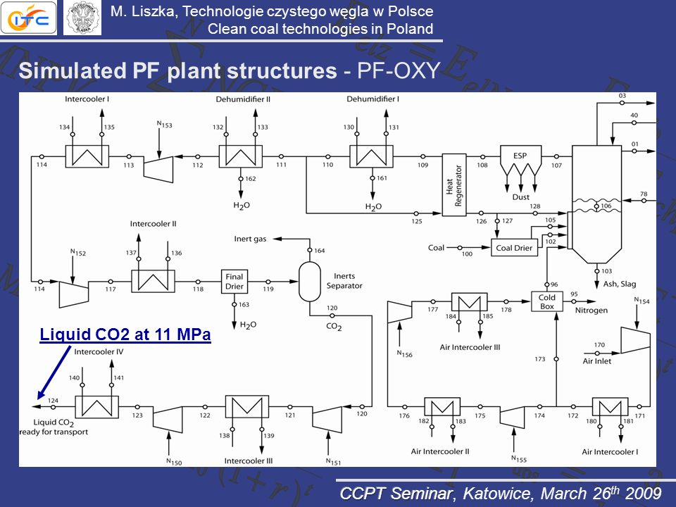 Simulated PF plant structures - PF-OXY