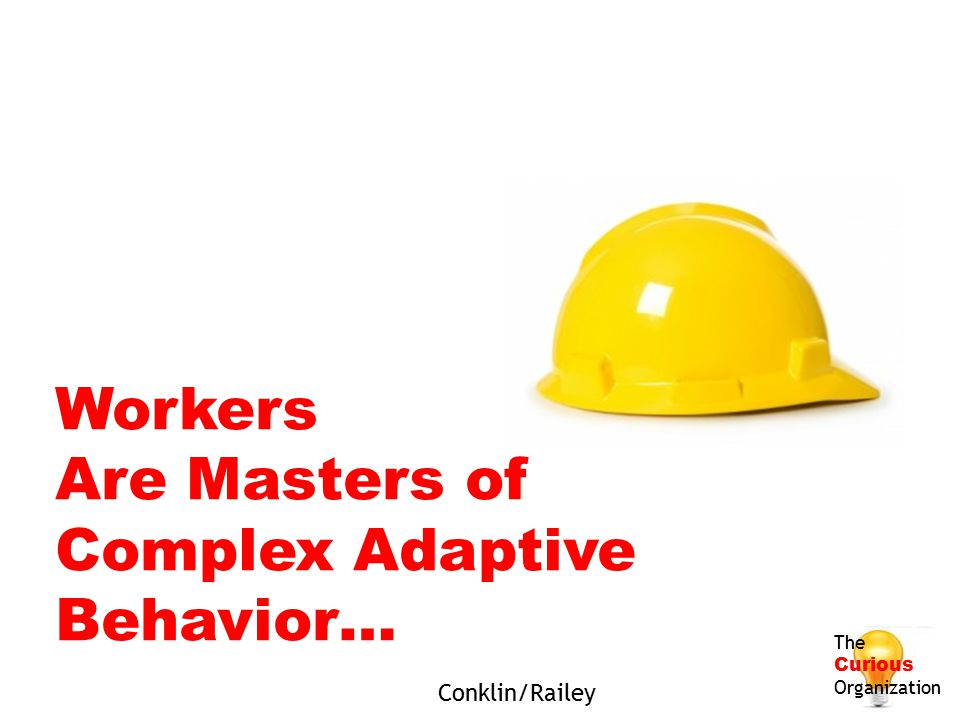 Workers Are Masters of Complex Adaptive Behavior… Conklin/Railey The
