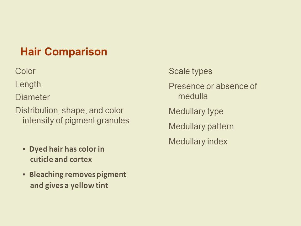 Hair Comparison Color Scale types Length