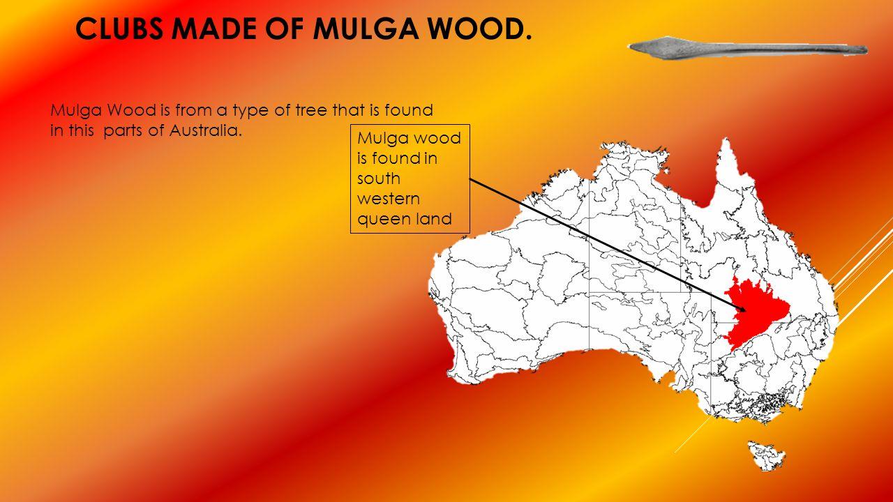Clubs made of mulga wood.