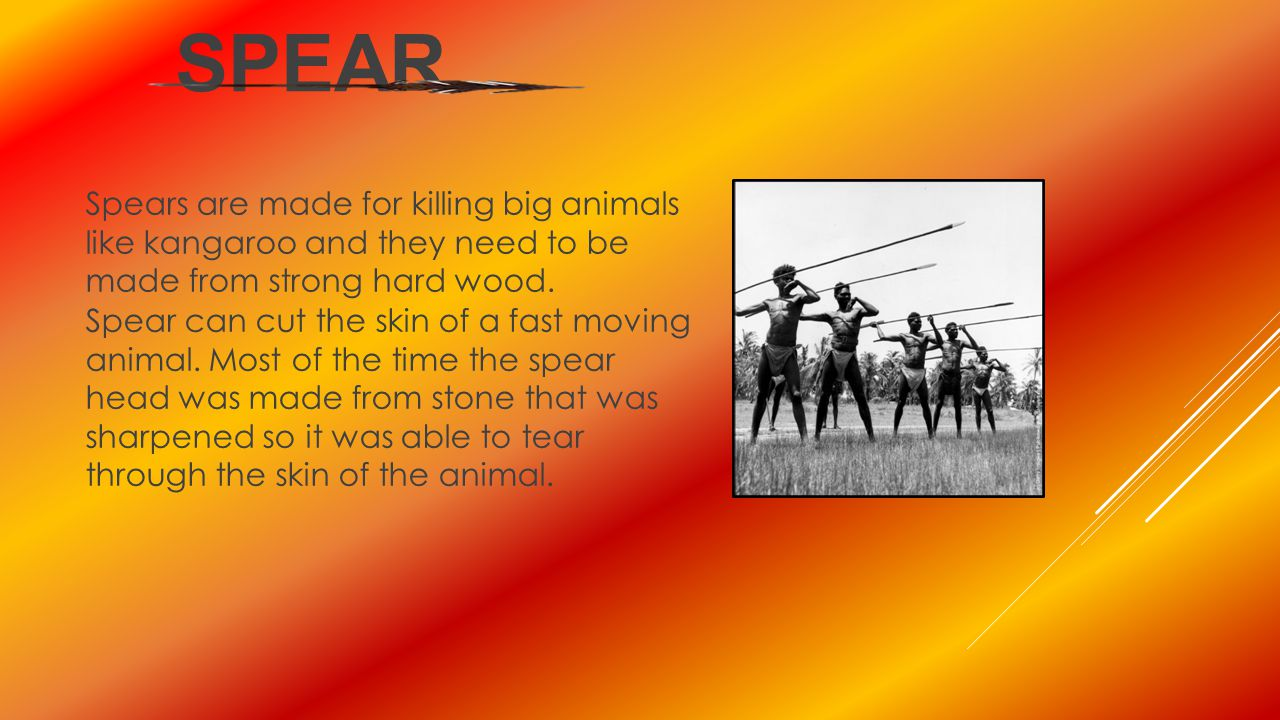 spear Spears are made for killing big animals like kangaroo and they need to be made from strong hard wood.
