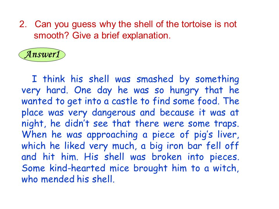 2. Can you guess why the shell of the tortoise is not smooth