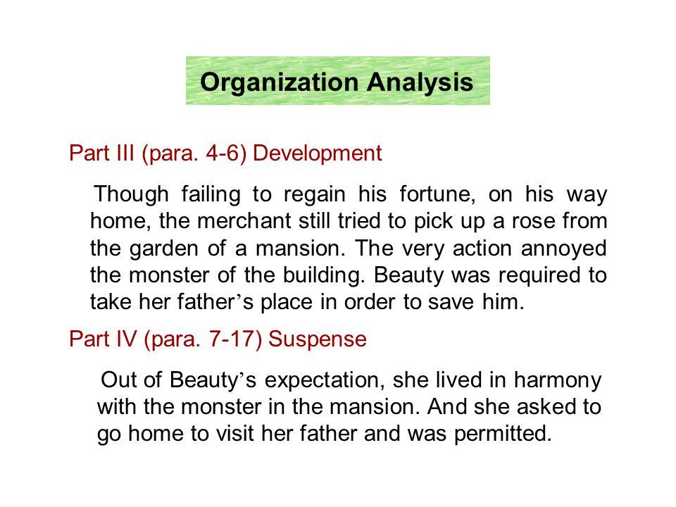 Organization Analysis