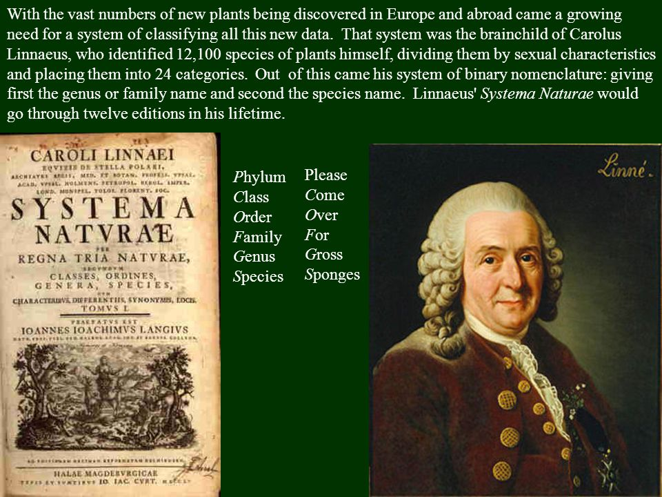 With the vast numbers of new plants being discovered in Europe and abroad came a growing need for a system of classifying all this new data. That system was the brainchild of Carolus Linnaeus, who identified 12,100 species of plants himself, dividing them by sexual characteristics and placing them into 24 categories. Out of this came his system of binary nomenclature: giving first the genus or family name and second the species name. Linnaeus Systema Naturae would go through twelve editions in his lifetime.