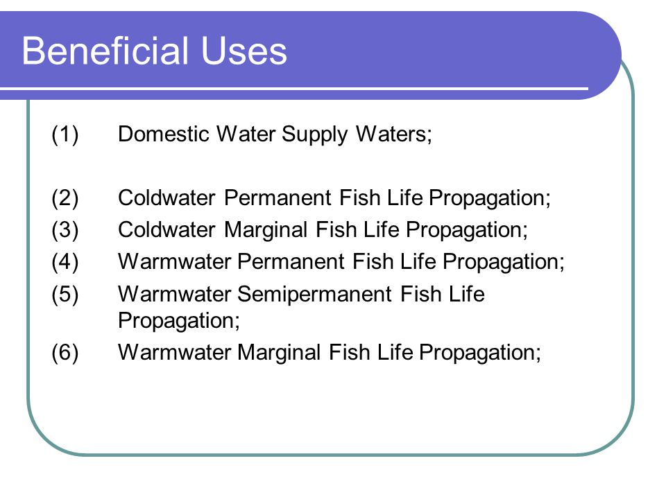 Beneficial Uses (1) Domestic Water Supply Waters;