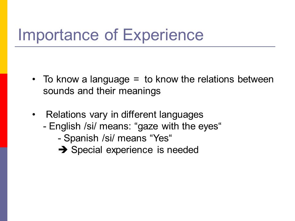 Importance of Experience