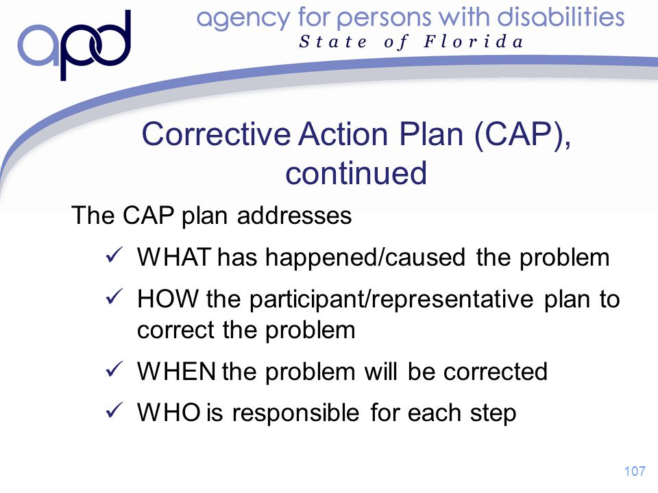 Corrective Action Plan (CAP), continued