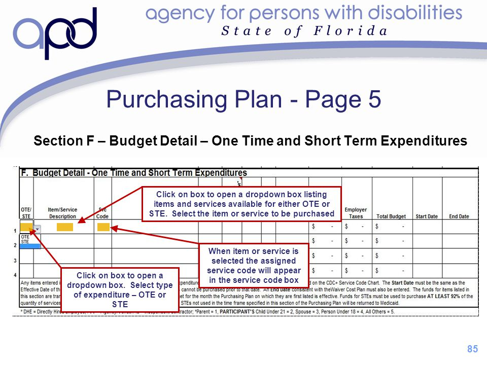 Purchasing Plan - Page 5 Section F – Budget Detail – One Time and Short Term Expenditures.