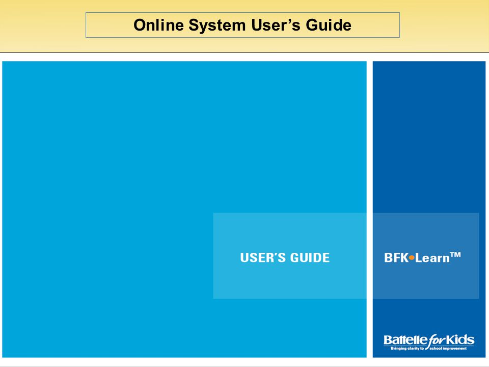 Online System User's Guide