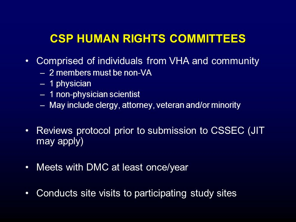 CSP HUMAN RIGHTS COMMITTEES