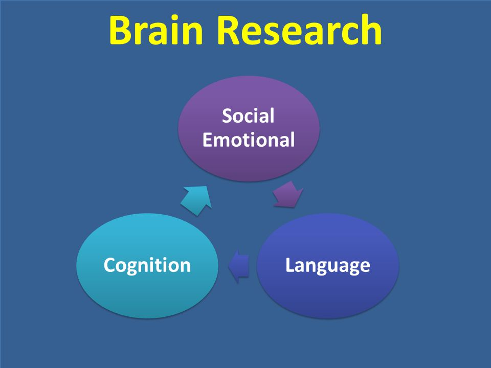 Brain Research Social Emotional Language Cognition