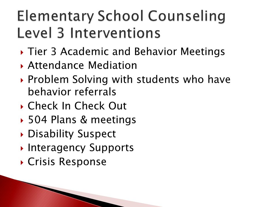Elementary School Counseling Level 3 Interventions