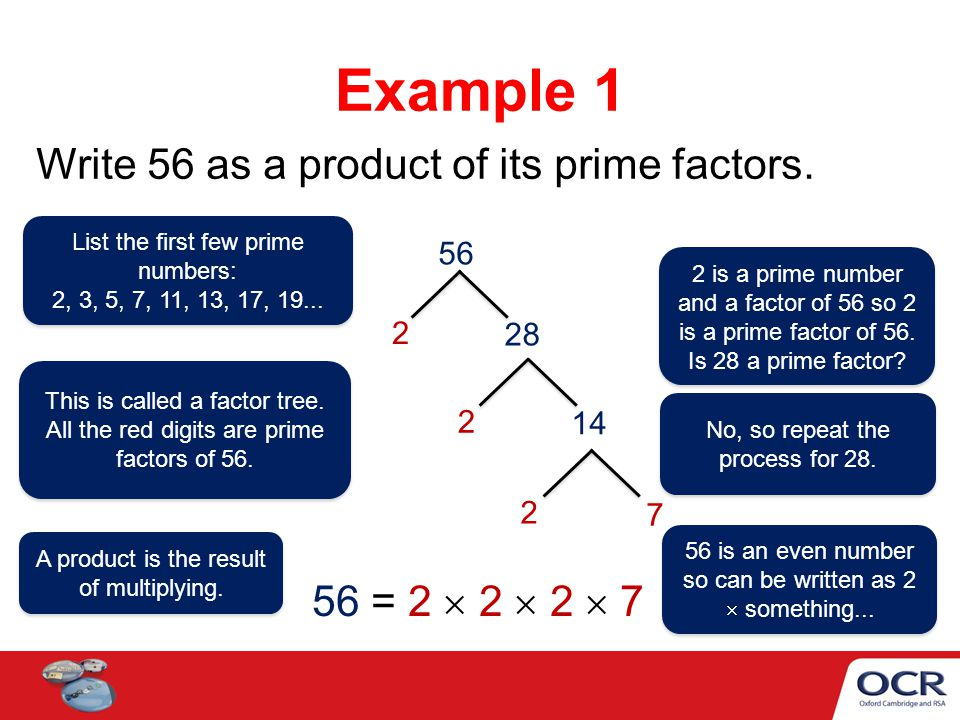 Example 1 Write 56 as a product of its prime factors.