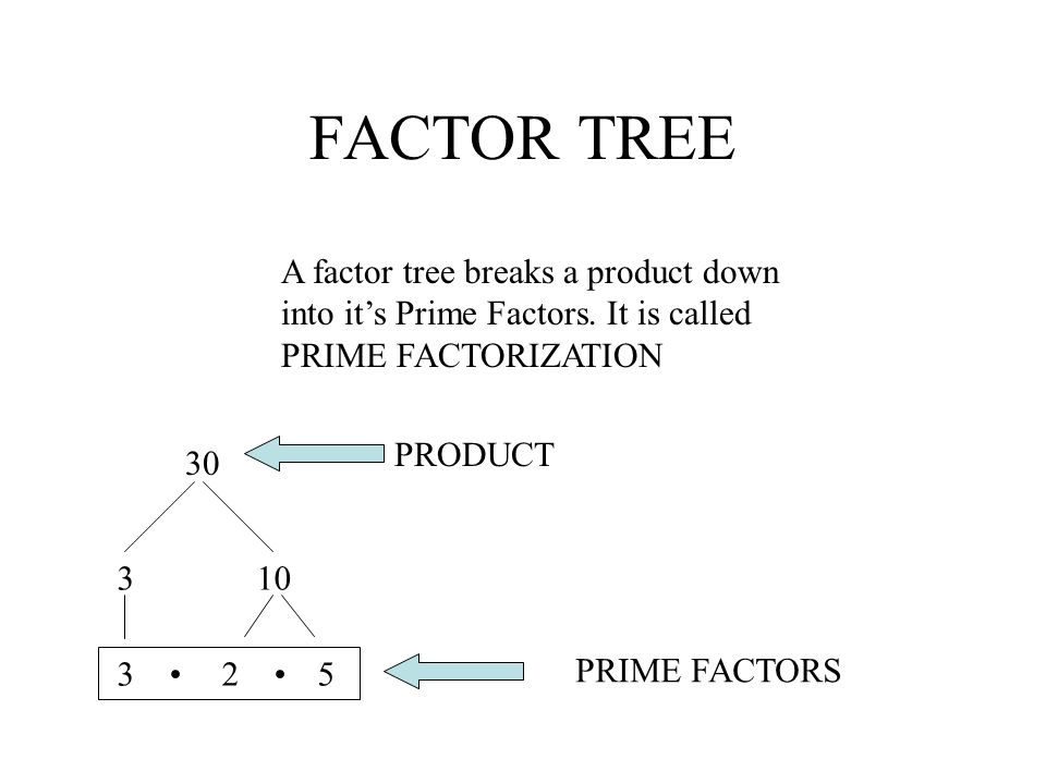 FACTOR TREE A factor tree breaks a product down into it's Prime Factors. It is called PRIME FACTORIZATION.