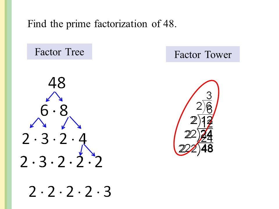 Find the prime factorization of 48.