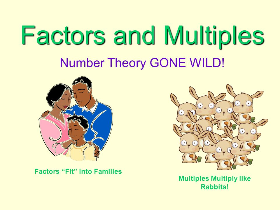 Number Theory GONE WILD!