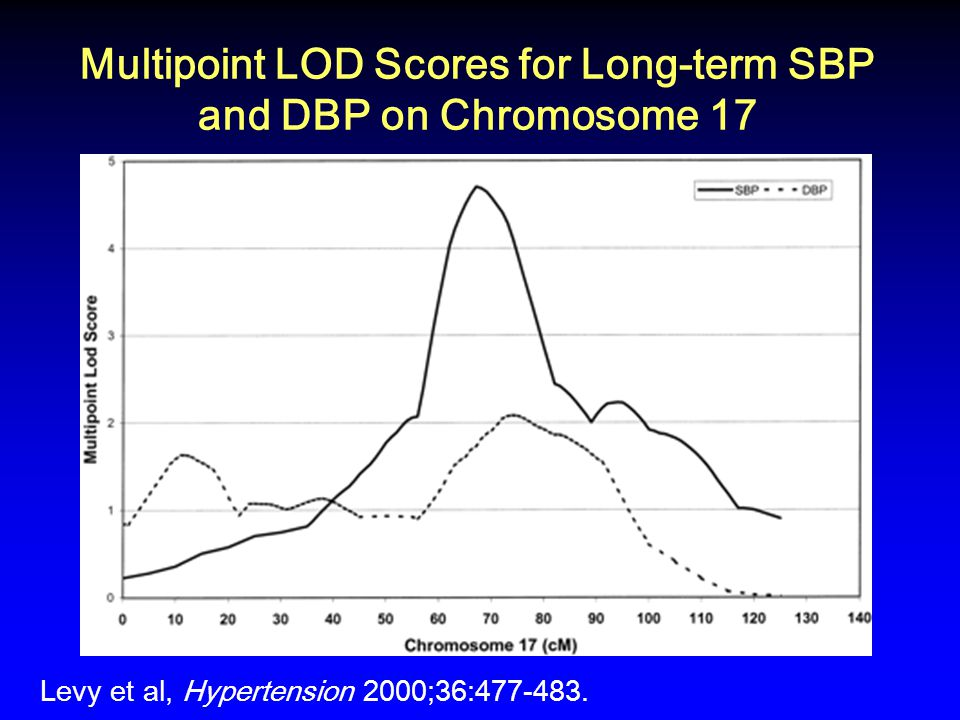 Multipoint LOD Scores for Long-term SBP and DBP on Chromosome 17