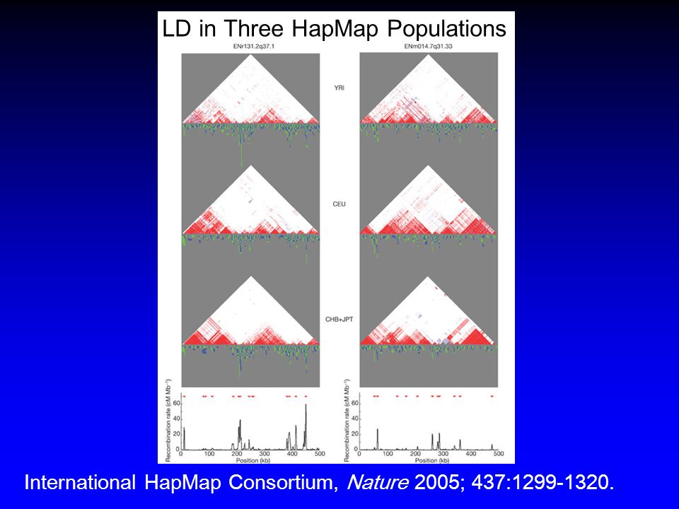 LD in Three HapMap Populations