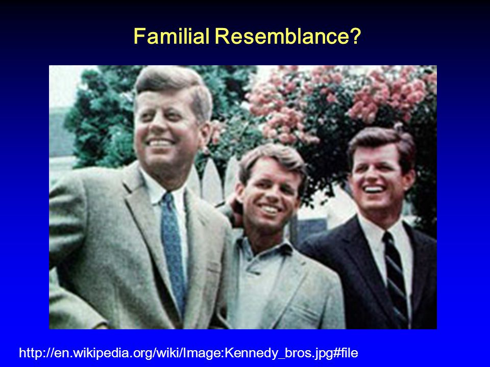 Familial Resemblance http://en.wikipedia.org/wiki/Image:Kennedy_bros.jpg#file