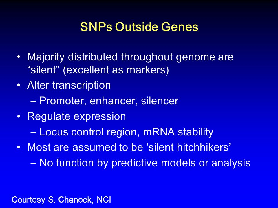 SNPs Outside Genes Majority distributed throughout genome are silent (excellent as markers) Alter transcription.