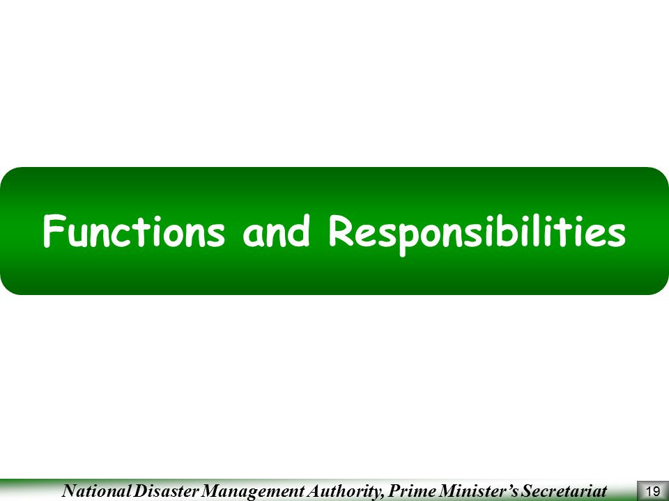 Functions and Responsibilities