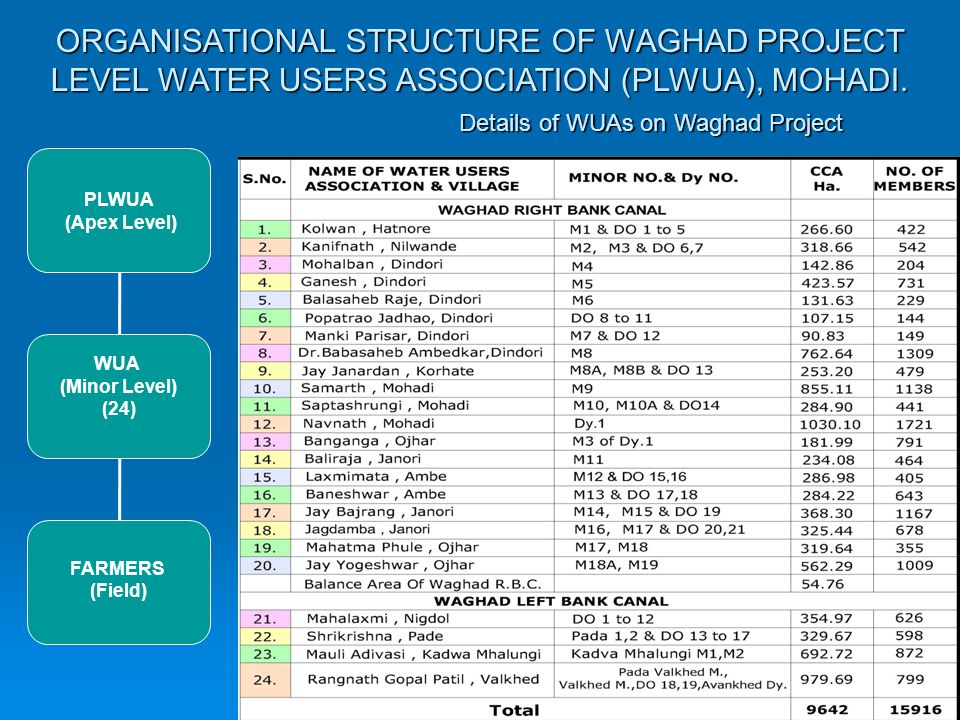 ORGANISATIONAL STRUCTURE OF WAGHAD PROJECT LEVEL WATER USERS ASSOCIATION (PLWUA), MOHADI.